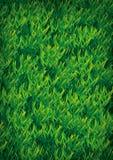 De illustratie van de grastextuur Stock Afbeeldingen