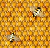 De illustratie van de honing Stock Foto's