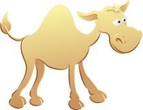 De illustratie van de kameel Stock Foto