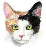 De Illustratie van de Kat van het calico Stock Fotografie