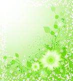 De illustratie van de lente Royalty-vrije Stock Afbeelding