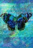 De illustratie van de vlinder Stock Afbeelding
