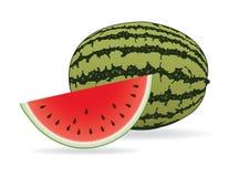 De illustratie van de watermeloen   Royalty-vrije Stock Fotografie