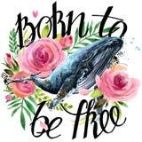 De illustratie van de waterverfwalvis Uitstekende rozenachtergrond Geboren vrij te zijn Stock Foto