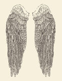 De illustratie van engelenvleugels, gegraveerde stijl, getrokken hand Stock Foto