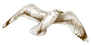 De illustratie van de gravuretekening van vliegende meeuw royalty-vrije illustratie