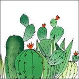 De illustratie van groene cactus Royalty-vrije Stock Afbeeldingen