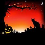 De Illustratie van Halloween met Pompoenen Royalty-vrije Stock Afbeeldingen