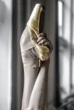 De illustratie van het ballet dancer Royalty-vrije Stock Afbeeldingen