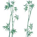 De illustratie van het bamboe Stock Afbeeldingen