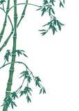 De illustratie van het bamboe Stock Fotografie