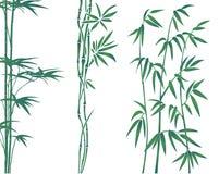 De illustratie van het bamboe Stock Foto's
