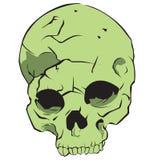 Groene schedel Royalty-vrije Stock Afbeeldingen