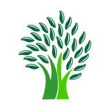 De illustratie van het boomembleem Boompictogram Royalty-vrije Stock Fotografie