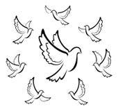 De Illustratie van het duifsymbool Stock Afbeeldingen