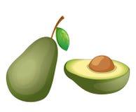 De illustratie van het fruit royalty-vrije illustratie