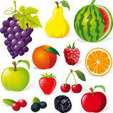 De illustratie van het fruit Stock Afbeeldingen