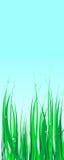 De illustratie van het gras Royalty-vrije Stock Foto