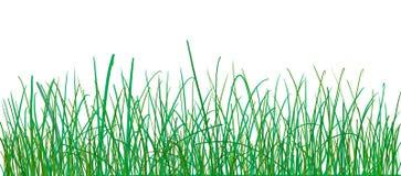 De illustratie van het gras Stock Foto