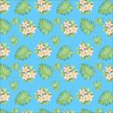 De illustratie van het waterverfpatroon, tropische bloemen, roze en gele plumeria, gaan weg stock illustratie