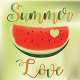De illustratie van het de zomerconcept Plak van Watermeloen Stock Foto's