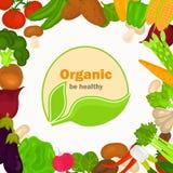 De illustratie van kleurengroenten op witte achtergrond Natuurvoedingembleem in het midden voor Web en mobiel ontwerp Stock Afbeeldingen