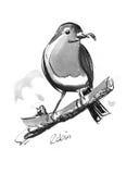 De illustratie van Robin vector illustratie