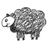 De Illustratie van schapen Royalty-vrije Stock Foto
