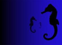 De illustratie van Seahorse Stock Afbeelding