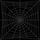 De Illustratie van Spiderweb Stock Fotografie
