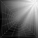De Illustratie van Spiderweb Royalty-vrije Stock Fotografie