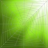 De Illustratie van Spiderweb Royalty-vrije Stock Afbeeldingen