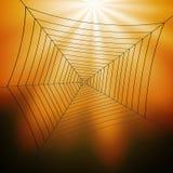 De Illustratie van Spiderweb Royalty-vrije Stock Afbeelding