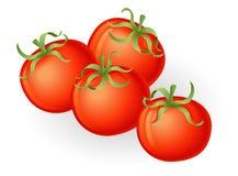 De illustratie van tomaten Stock Afbeeldingen