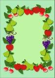 De illustratie van vruchten Stock Afbeelding
