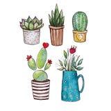 De illustratie van de waterverf Illustratie van Cactussen en homeplants royalty-vrije stock afbeeldingen
