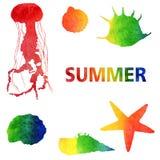 De illustratie van de waterverfzomer Reeks regenboogkwallen en shells stock illustratie