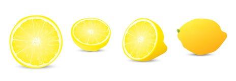 De illustratieinzameling van de citroen Stock Afbeeldingen