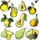 De illustratiereeks van het fruit Stock Foto's