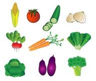De illustraties van groenten Stock Fotografie
