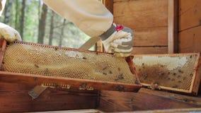 De imker werkt met bijen en bijenkorven aan de bijenstal stock footage