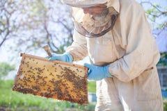 De imker werkt met bijen en bijenkorven aan de bijenstal Imker op bijenstal Royalty-vrije Stock Afbeelding