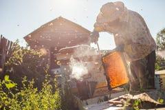 De imker werkt met bijen en bijenkorven aan de bijenstal Imker op bijenstal Royalty-vrije Stock Fotografie