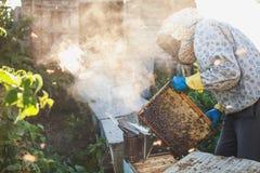 De imker werkt met bijen en bijenkorven aan de bijenstal Imker op bijenstal Royalty-vrije Stock Foto's
