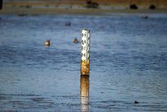 De indicator van de waterdiepte Stock Fotografie