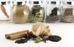 De Indische gekruide kruiden en de ingrediënten van de chaithee Stock Foto's