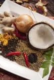 De Indische Ingrediënten van het Voedsel Stock Afbeeldingen