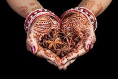 De Indische kruiden van de steranijsplant Stock Fotografie