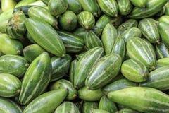 De Indische plantaardig-gerichte pompoen wordt het vaak genoemd groene aardappel royalty-vrije stock afbeeldingen
