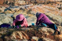 De Indonesische vrouwen sorteren de visserijvangst door op een rots te zitten door het overzees in de avond Concept het inheemse  royalty-vrije stock afbeelding